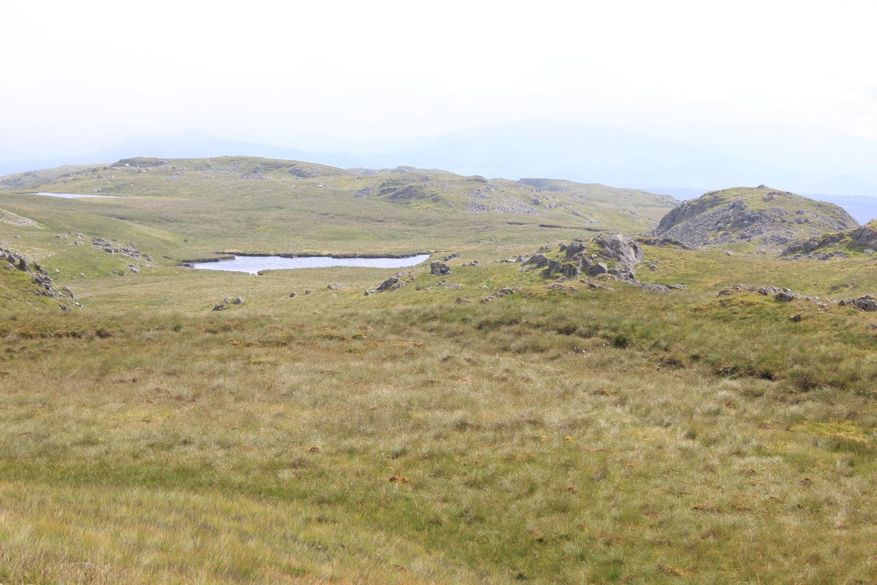 Small pools on the South ridge of Arenig Fawr