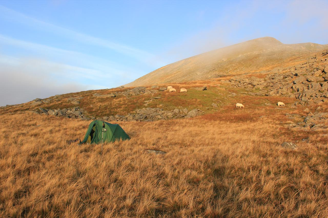 Tent at dawn. Mist rolling in.